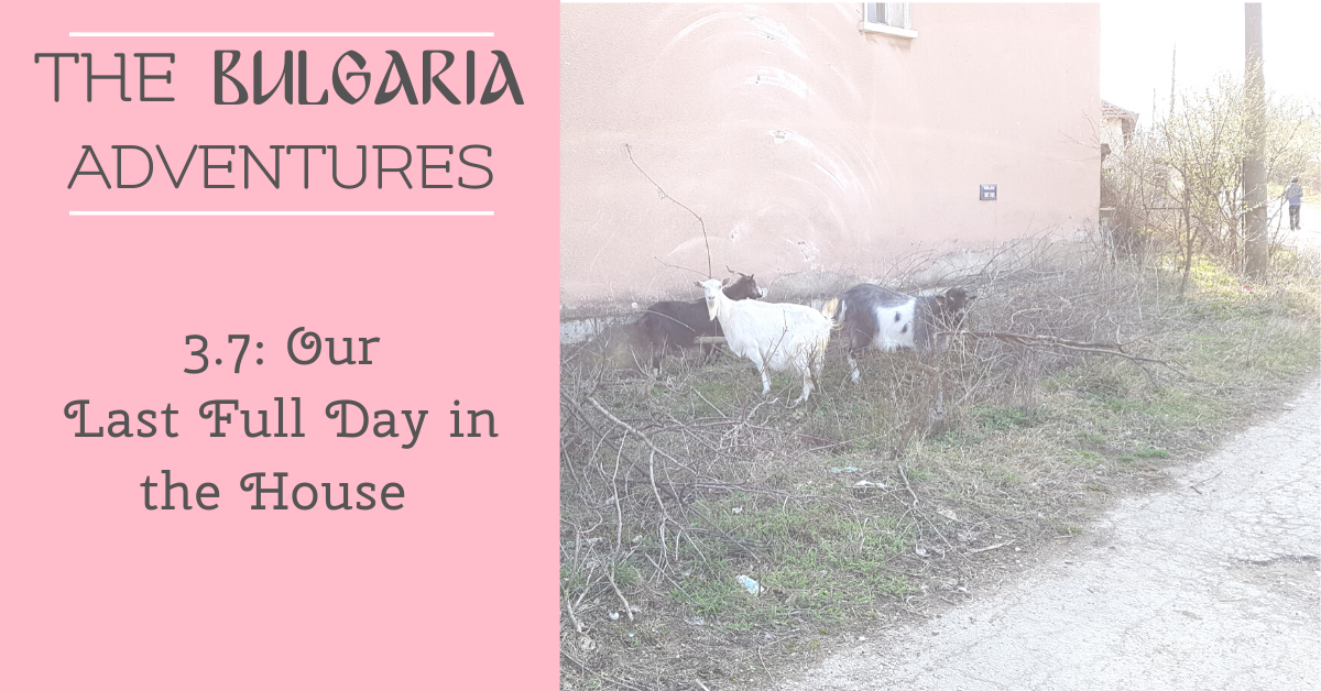 The Bulgaria Adventures 3.7: Our Last Full Day in the House