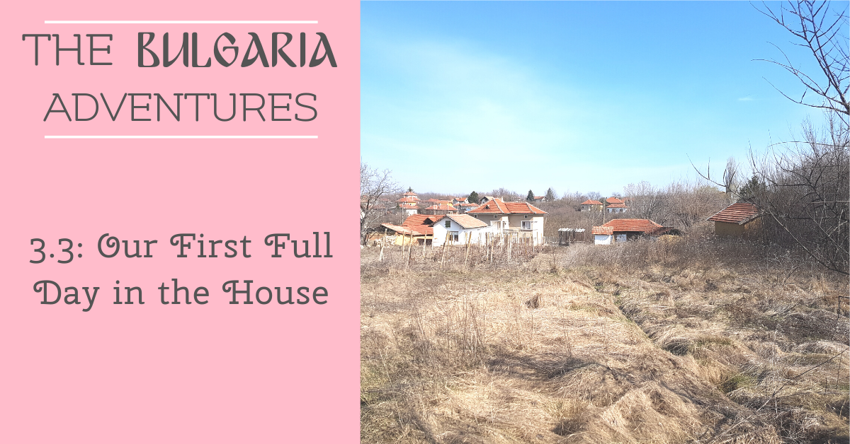 The Bulgaria Adventures 3.3: Our First Full Day in the House